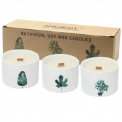 Pack of 3 Botanical Candles - Japanese Garden