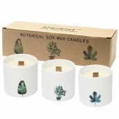Pack of 3 Botanical Candles - Victorian Peony