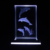 Four Dolphins Crystal Laser Block 50mm x 50mm x 80mm