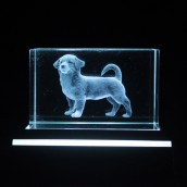 Dog Crystal Laser Block & Coloured LED Display Stand