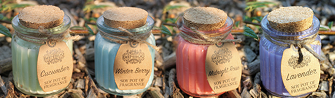 Soy Pot of Fragrance Candles