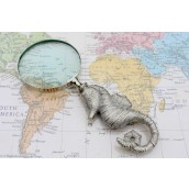 Vintage Magnifying Glass - Seahorse
