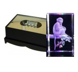 Monkey Crystal Laser Block & Coloured LED Display Stand